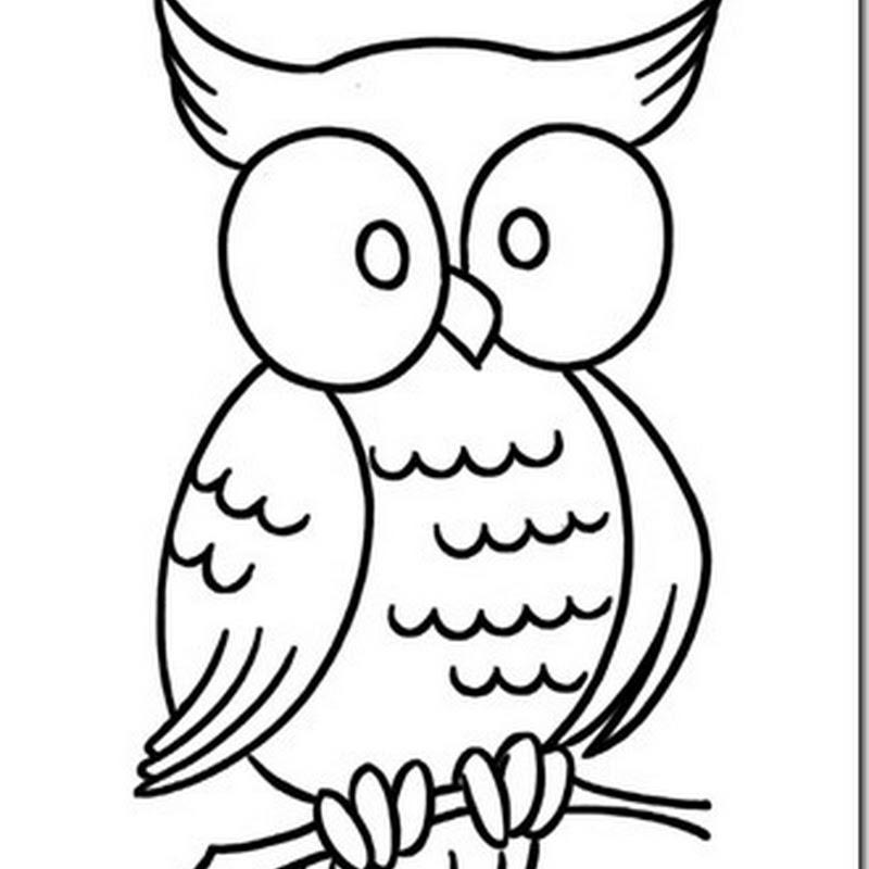 Dibujos de búhos para colorear para niños.