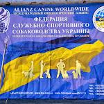 World_Cup_2014_022.JPG