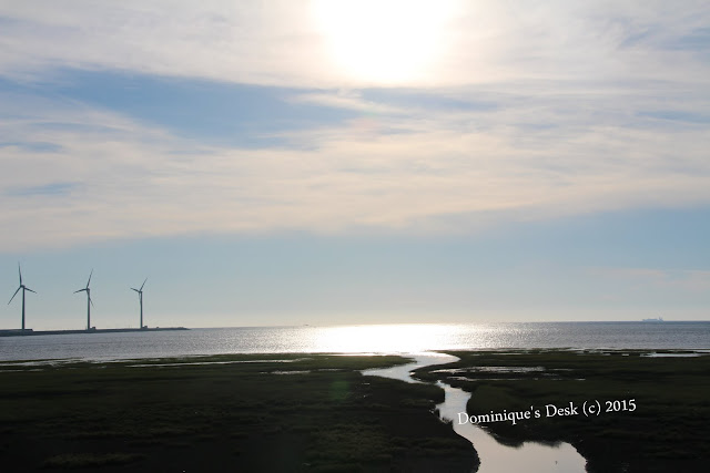 The wind turbines at Gao Mei Wetlands