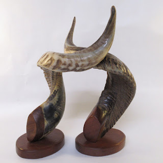 Mounted Rams Horn Pair