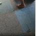Babado e confusão: mulher mete a porrada em amante do marido até ela fazer xixi nas calças; veja vídeo