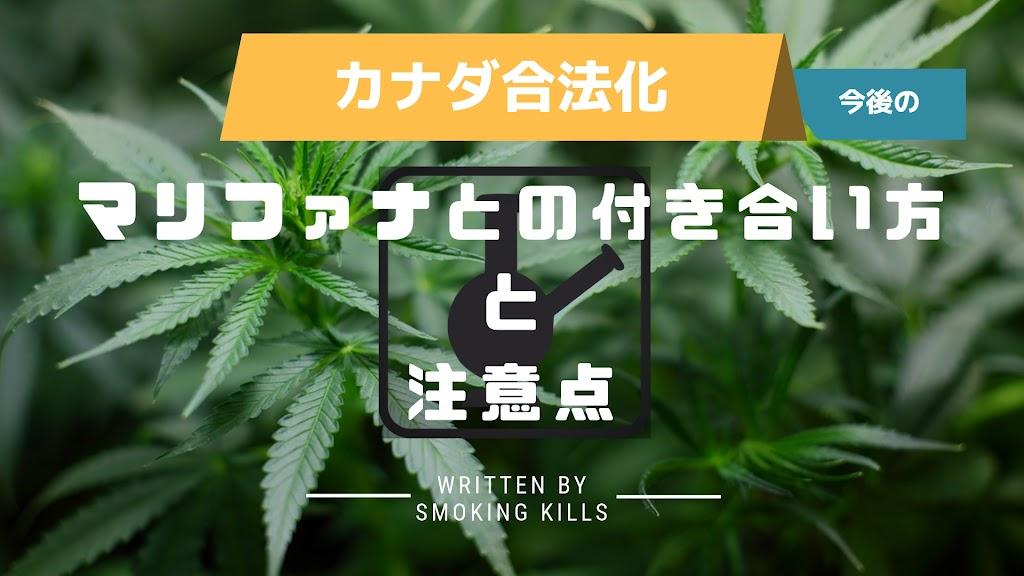 カナダ大麻合法化で日本はどう動く?日本と大麻の今後のあり方・マリファナを語る上での注意点
