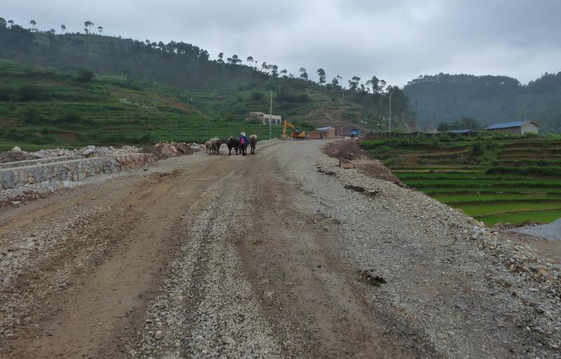 Chine.Yunnan Wen shan et BA MEI 1 - P1260853.JPG