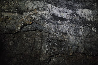 Photo: This piece is quite large, must have been 3 to 4 meters in dimension. It looks like an ancient animal with its head on the left, a long neck, and four short legs.