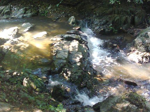Fotos roemenie zomer van mobiel 2015 juli augustus 051.jpg