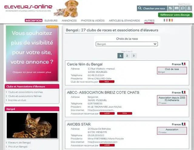 Association des chats du Bengal France