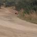 Corpo é encontrado com marcas de tiros em Arraial do Cabo