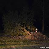Bomen omgewaaid aan N366 - Foto's Dennie Gaasendam
