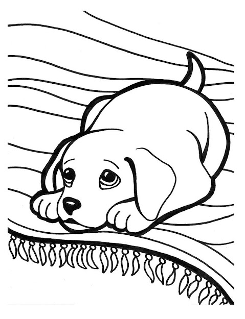 Sad Puppy Cartoon Puppies Sad Coloring Page