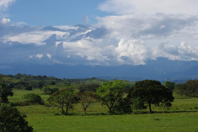 Les Andes depuis les Llanos (Restrepo, Meta, Colombie), 8 novembre 2015. Photo : J.-M. Gayman