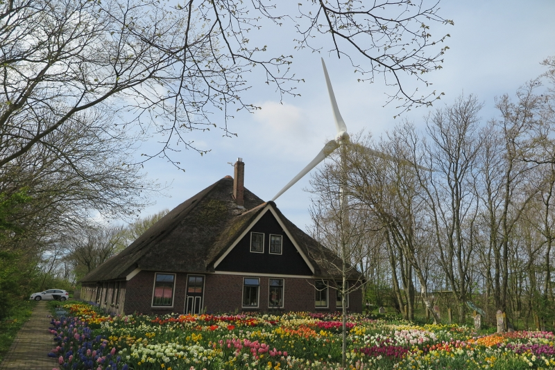 Weekend Noord Holland 2016 - IMG_6679_800x534.JPG