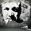 David Guillerm's profile photo