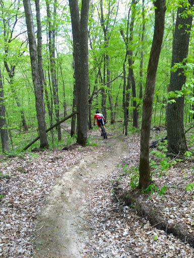 Last part of Twin lakes trail on Hudson's Hula