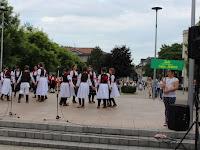 7. Soko Szerbiából.JPG