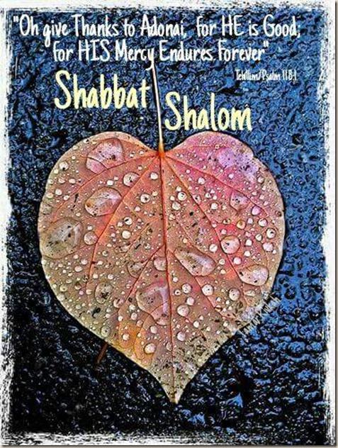 Poster_leaf_shabbat