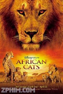 Báo Châu Phi - African Cats (2011) Poster