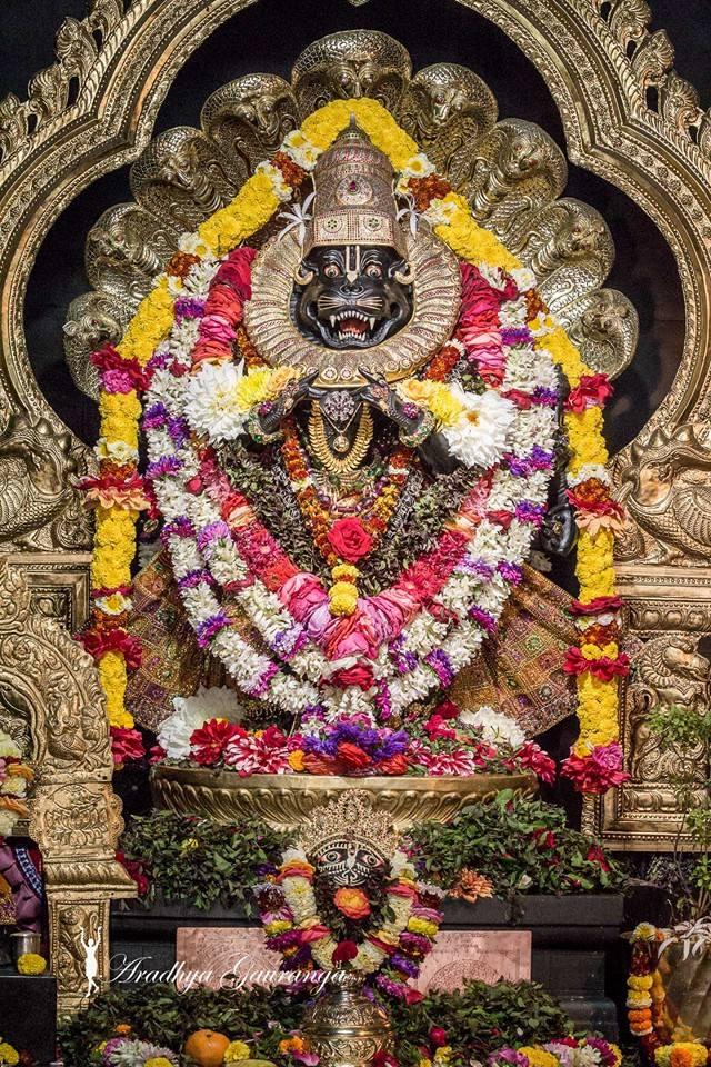 ISKCON Mayapur Deity Darshan 02 Feb 2016 (22)