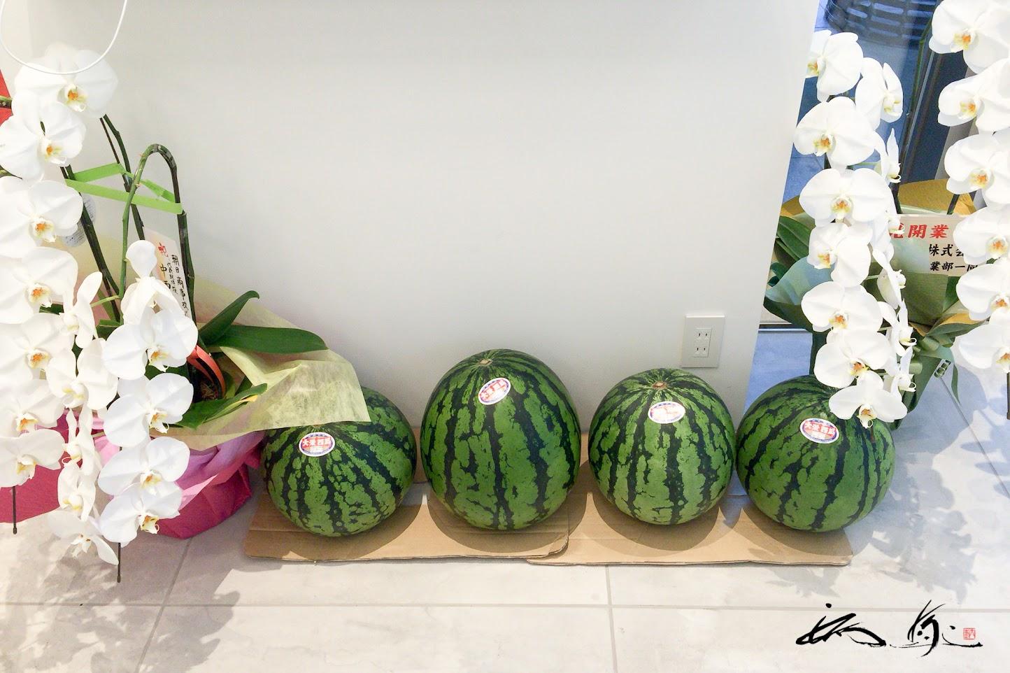 鳥取県産の大栄スイカ