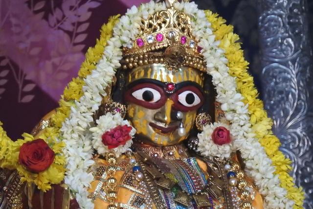 Radha Govinda Devji Deity Darshan 23 April 2016 (9)