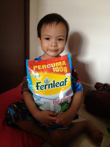 Susu Fernleaf Full Cream
