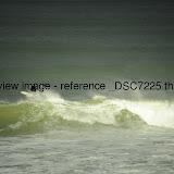 _DSC7225.thumb.jpg