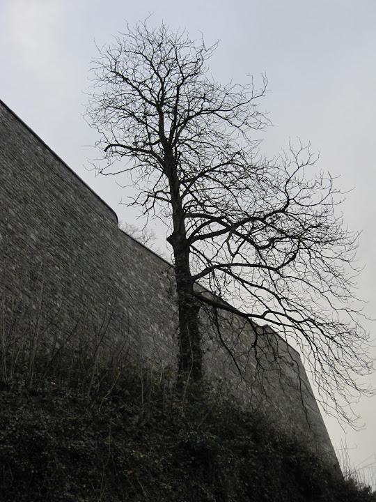 那慕尔Namur美图美景,分享一下 - 半省堂 - 17