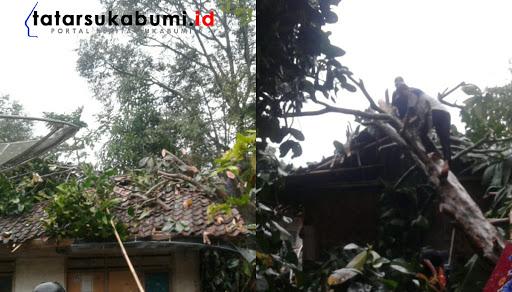 Puting Beliung terjang Nagrak akibatkan Pohon tumbang // Foto : Isep Panji