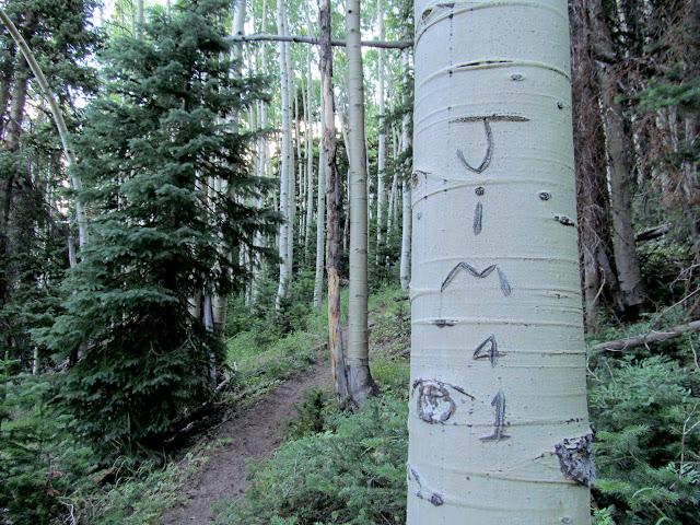 Jim '41