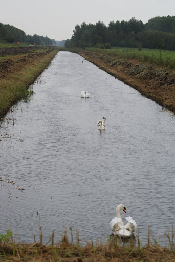 "110km ""Van Z tot Z"" (NL): 9-10/09/2011 DSC05834"
