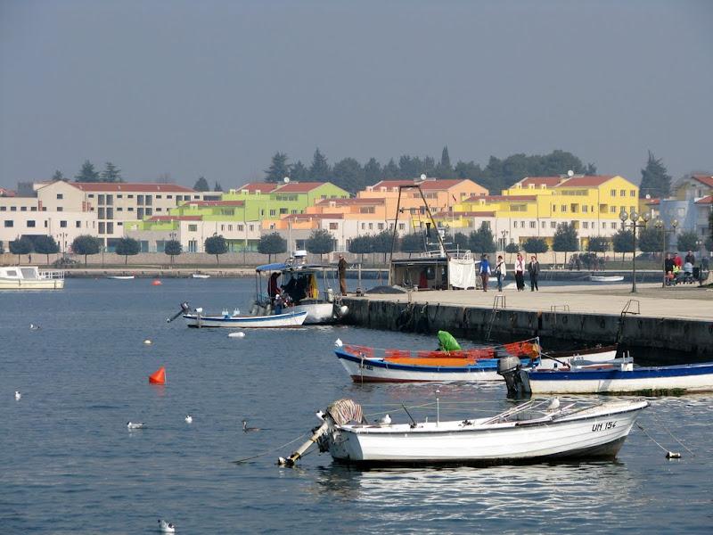 IMG_9217 - Umag (Croatia)