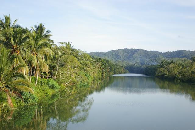 La chaîne centrale vue depuis la côte orientale de Palawan (au Sud de Roxas), 19 août 2005. Photo : J.-M. Gayman
