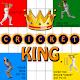 Cricket King (game)