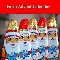 Farm Advent Calendar