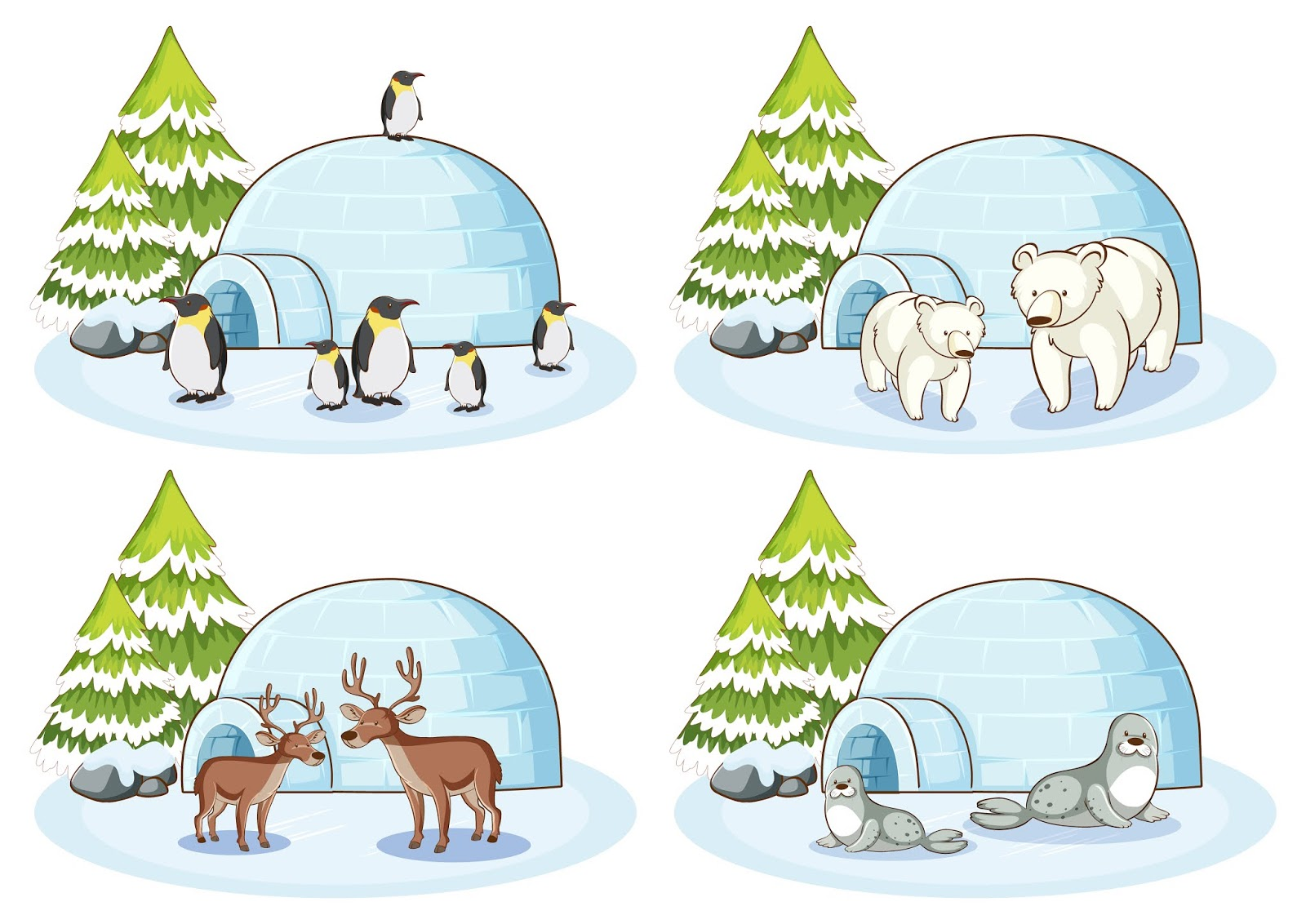 Four Winter Scenes With Different Animals Free Download Vector CDR, AI, EPS and PNG Formats