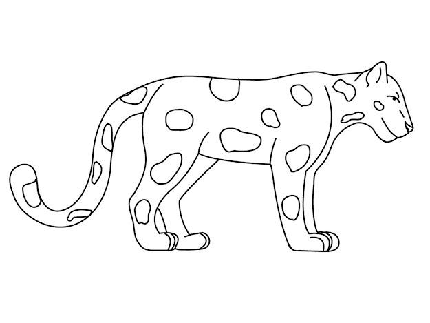 Rainforest Animal Coloring Sheets  Jaguar Animal Coloring Pages   Realistic Coloring Pages
