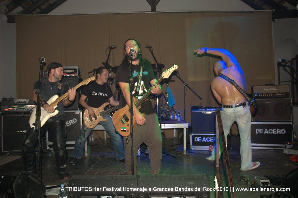 A TRIBUTOS 1er Festival Homenaje a Grandes Bandas del Rock 2010 - DSC_0152.jpg