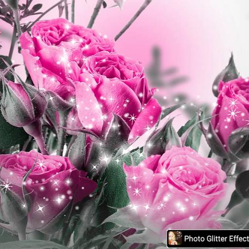 user Patricia Burnette apkdeer profile image