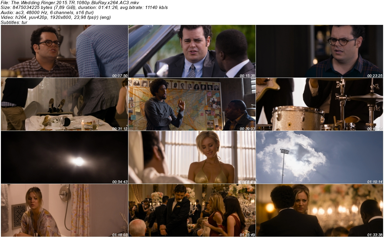 Çılgın Düğün 2015 - 1080p 720p 480p - Türkçe Dublaj Tek Link indir