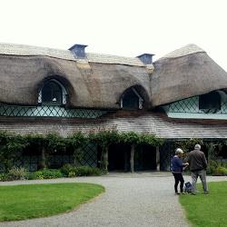 Swiss Cottage's profile photo
