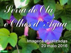 Serra Ota - Olhos Agua - 20.05.2016