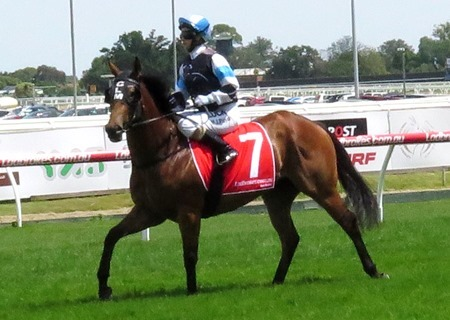 race 4_emphatically 2