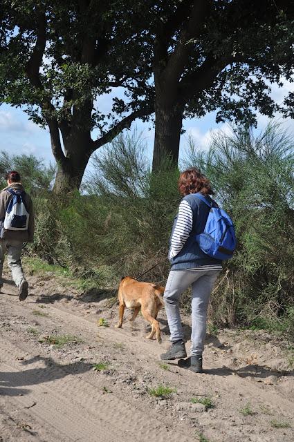 Survival voor Baas en Hond 2012 - DSC_0167.JPG