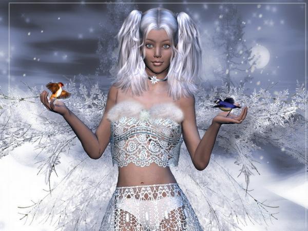 Winter And Birds, Fairies 3