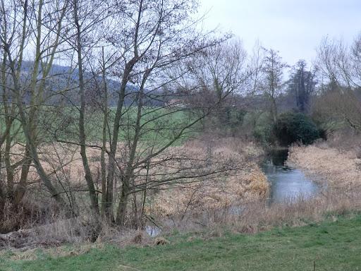 CIMG1655 River Darent near Eynsford