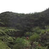 Hawaii Day 2 - 114_0939.JPG