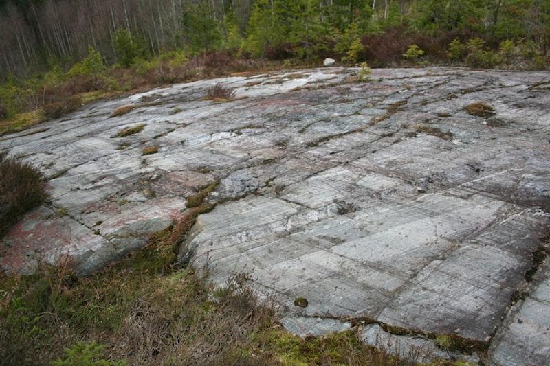 Kallioperägeologian kenttäkurssi, kevät 2012 - Kallioper%25C3%25A4kenttis%2B054.JPG