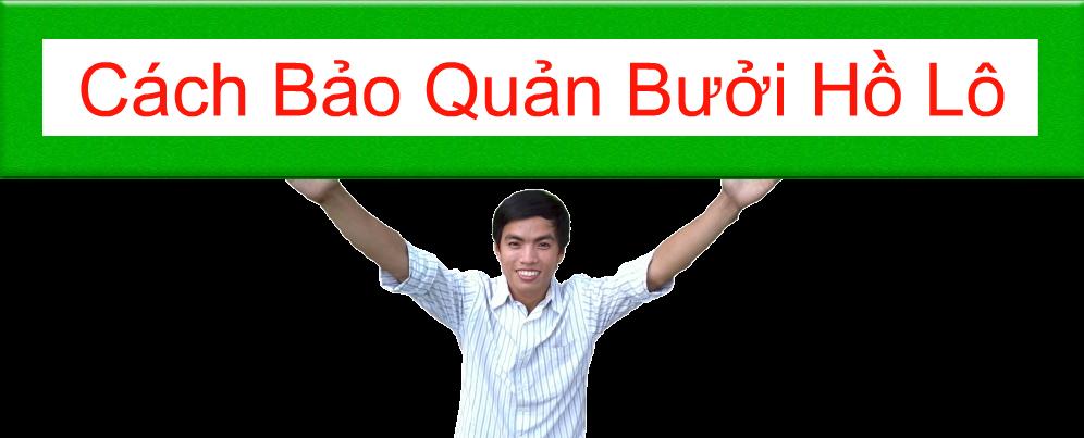 CACH-BAO-QUAN-BUOI-HO-LO-MUA-BUOI-HO-LO-O-DAU