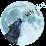 "Wolf ""Hunter"" Flay's profile photo"