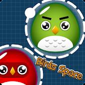 Birds Space Jump 2015