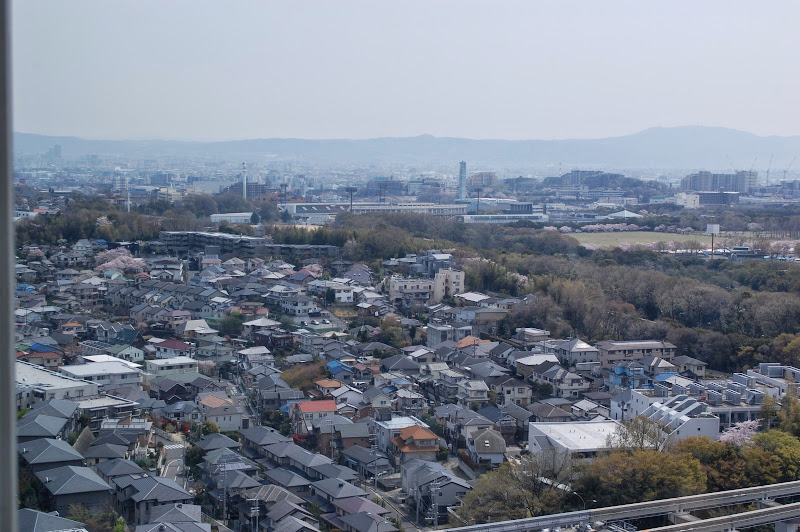 2014 Japan - Dag 9 - jordi-DSC_0799.JPG